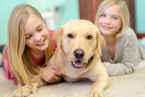 Family and pet on carpet- Harrisburg, PA- Abbey Carpet & Floor of Harrisburg